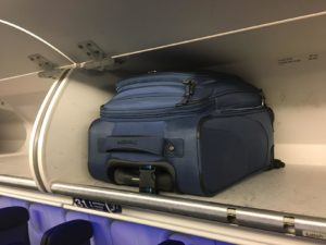 "TravelPro MaxLite 4 21"" Spinner Reivew"